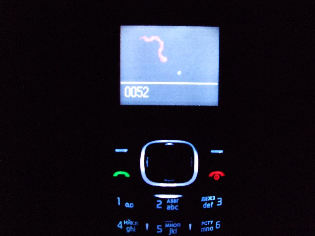 Nokia 1208 phone with the game Snake Xenzia.